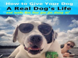 Dog's Life Audiobook