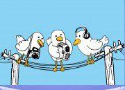 15k Twitter Followers