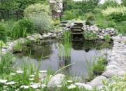 Garden Fish Pond Course